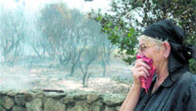Muchos vecinos colaboraron para extinguir las llamas, que amenazaban sus viviendas. (Lavandeira Jr. / Efe)