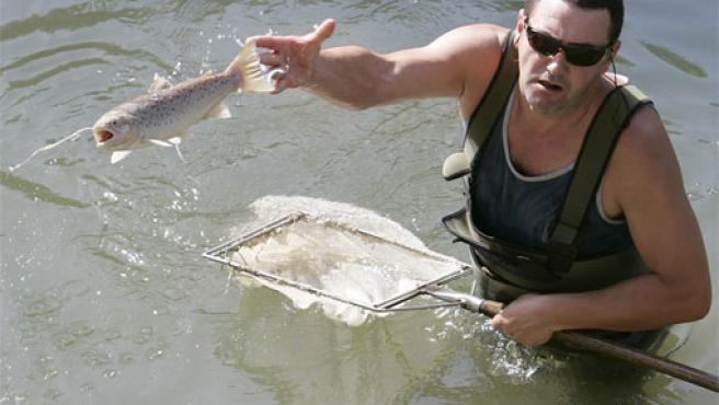 Un operario de Medio Ambiente saca un pez muerto del río Umia durante los trabajos de limpieza del vertido (Foto: Efe)