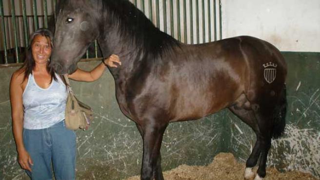La asociación ecologista Santa María afirma que los caballos se encuentran bien. (Foto: CYD Santa María)