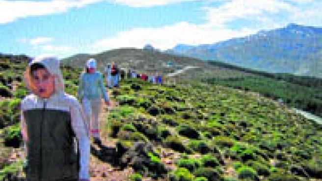 El programa Visita a espacios naturales oferta una treintena de actividades en los parques naturales y nacionales de Andalucía.