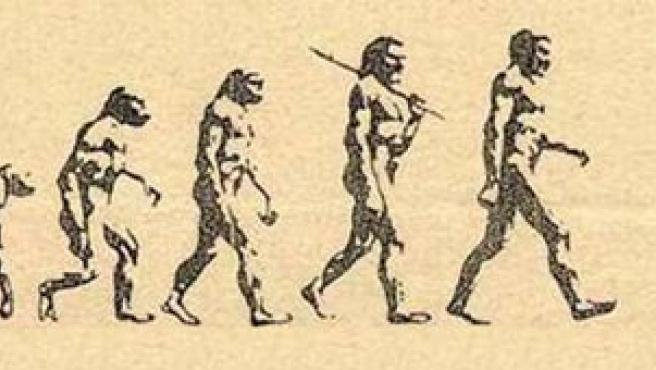 La evolución del ser humano, hasta ahora.