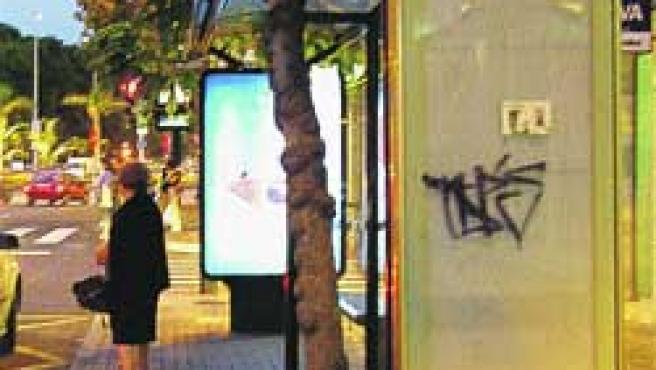 Nuestra lectora Concepción R. tuvo que coger un taxi porque los postes de la parada estaban en blanco. (C. R.).