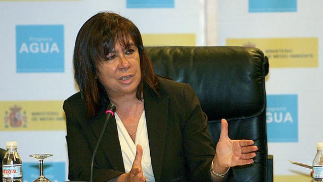 Cristina Narbona en la reunión del pleno del Consejo Nacional del Agua. (Mondelo / Efe)