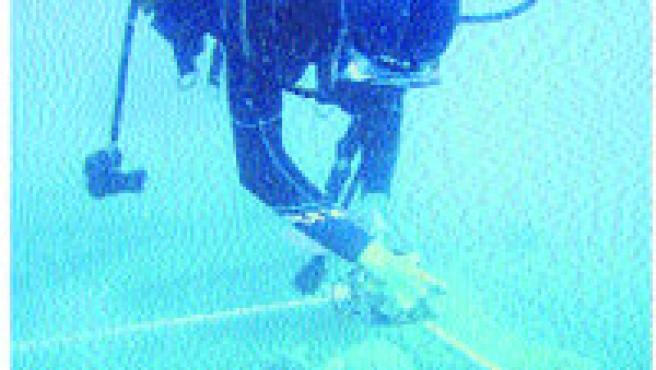 «El 60% de los arrecifes de coral de todo el mundo peligran».
