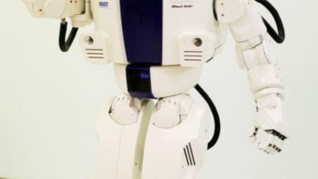 Robot Einstein. (Hanson Robotics)
