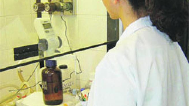 Una tècnica del laboratori de l'EMA, ahir, fent una de les proves dels nivells de l'aigua. (Esther Romagosa / Acn)