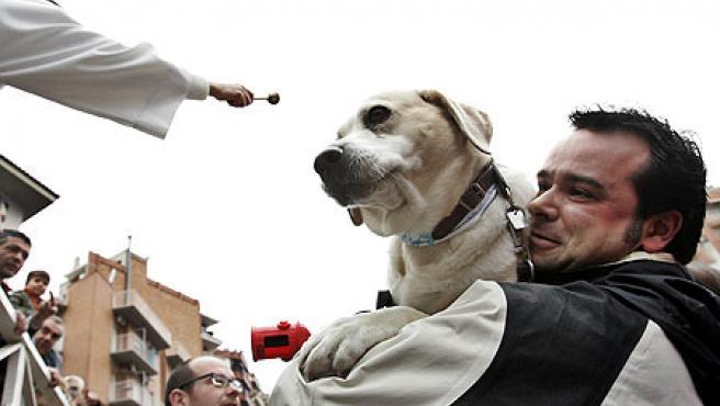 Un perro recibe la bendición durante la fiesta de los Tres Tombs en Barcelona. (EFE)