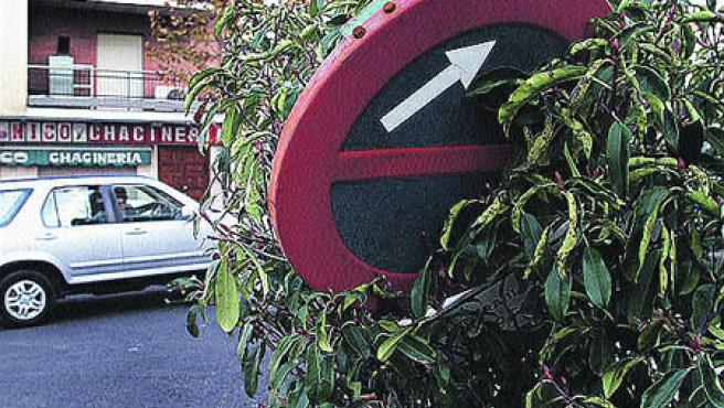 La señal de prohibido aparcar de la imagen es de la avenida Cervantes. (Torres)