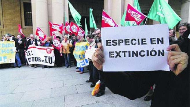 Cientos de universitarios de Aragón. (F. S.)