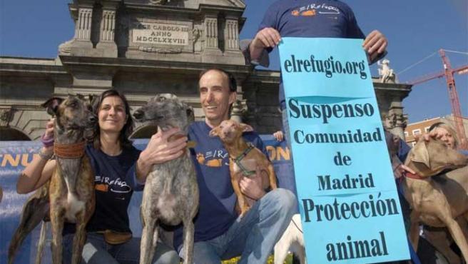 El Refugio presentó su balance de protección animal en la Comunidad de Madrid en la Puerta de Alcalá (El Refugio)