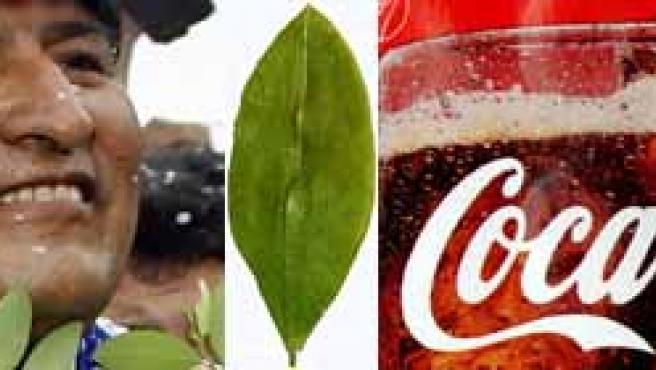 Los asambleístas partidarios de Evo Morales quieren dignificar la planta de coca. La primera afectada, la marca de refrescos.