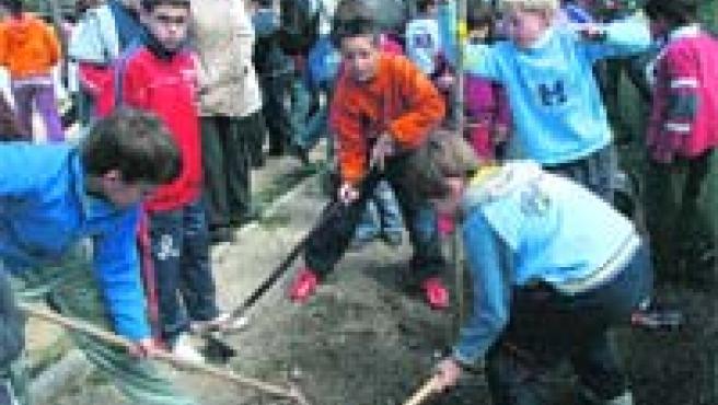 Un grupo de alumnos planta árboles, ayer, en el colegio Sierra Elvira en el Día de la Reforestación (Torres).