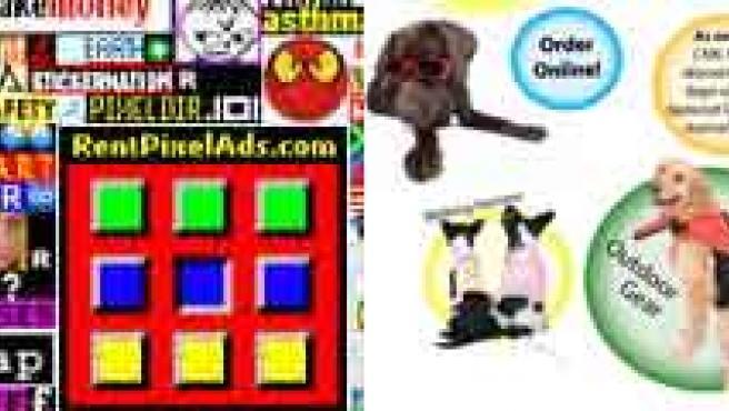 Huesos de plástico, una web de publicidad, accesorios para perros o decoración para la antena del coche, ideas muy rentables.