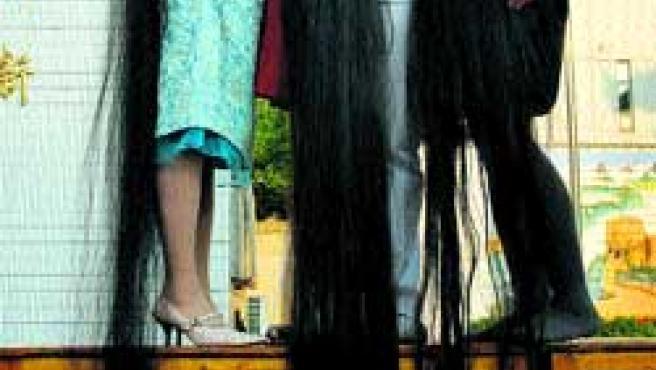Concurso de pelo largo. (Ap).
