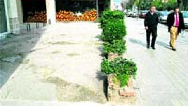 Los vecinos de la avenida de Andalucía llevan 15 años reclamando al Ayuntamiento que arregle una parte del bulevar (Torres).