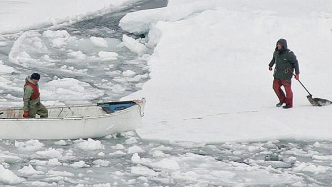 Cazador de focas en Canadá (Foto: REUTERS).