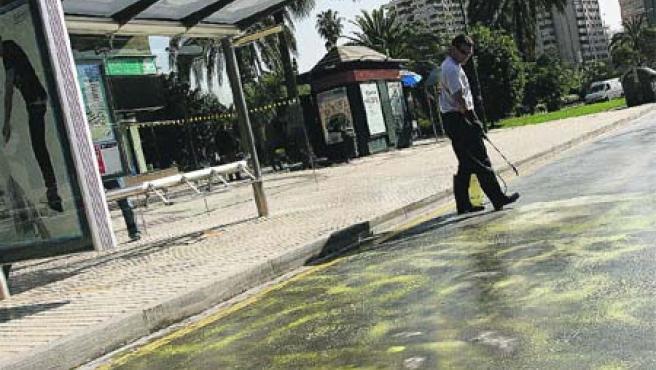 Un operario rociaba ayer con un pulverizador el suelo de una parte de la avenida de Andalucía (Álvaro Cabrera).