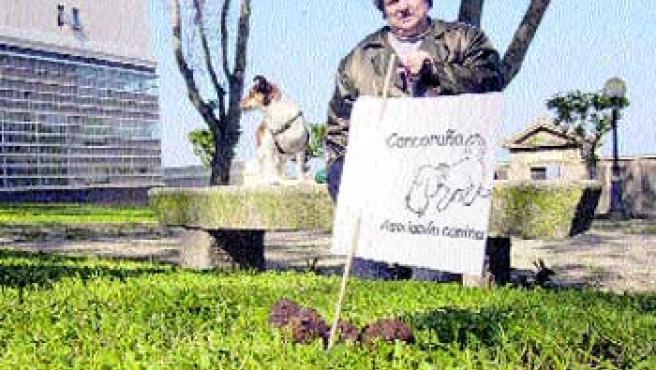 Miembros de Cancoruña señalaron ayer cacas dejadas por los perros en el cementerio británico. (Moncho Fuentes)