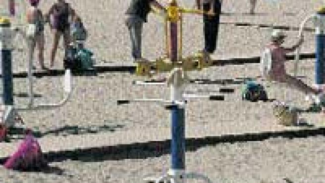 Varios alicantinos ejercitan sus cuerpos en la Cocó. ((F. GONZÁLEZ)