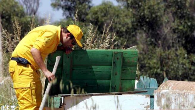 Un guardabosques durante las labores de búsqueda. (Foto: EFE)