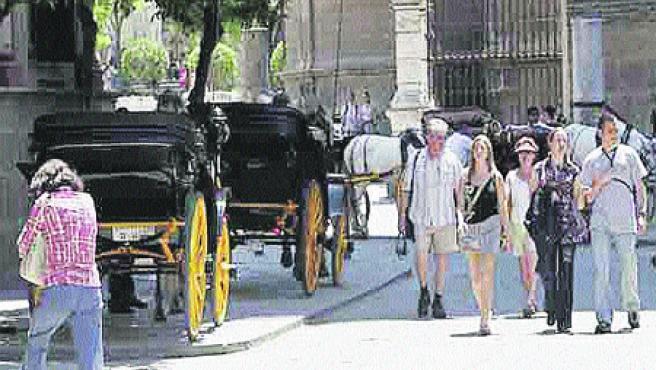 El fuerte calor que ha hecho estos días en Sevilla ha obligado a los cocheros a refugiarse bajo la sombra (Kako Rangel).