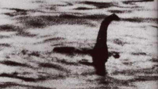 Una de las supuestas imágenes del monstruo.