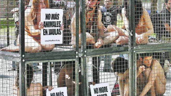 Els joves es van tancar en sis petites gàbies amb cartells en els que es podia llegir: «No més animals a les gàbies». (Toni Garriga / Efe)