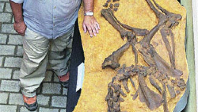 Los arqueólogos del yacimiento de Camp dels Ninots presentaron el molde de silicona de un esqueleto de un rinoceronte de (Robin Townsend / EFE).