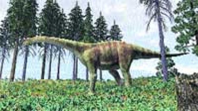 Europa Tambien Tuvo Dinosaurios Gigantes El paleontólogo argentino rodolfo coria realiza un viaje por la patagonia, para relatar el descubrimiento de los dinosaurios que habitaron ese territorio hace más de 64 millones de años, entre los que están. europa tambien tuvo dinosaurios gigantes
