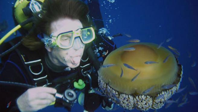 A la izquierda, un buceador se burla de una medusa. A la derecha, una picadura de un ejemplar en un brazo.