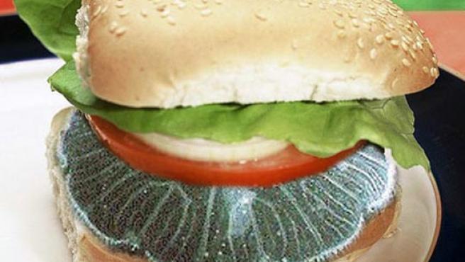 Pauly, el pionero, quiere llamarla 'hamburguesa de flor de mar' para que no la asocien con las medusas.