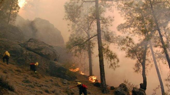 Un grupo de bomberos trabaja en la extinción del incendio en las cercanías de la localidad de Tejeda,Gran Canaria(SERGIO PÉREZ / EFE)