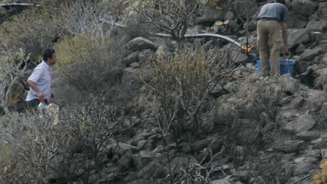 Trabajadores del parque zoológico de Palmitos Park, afectado por el incendio, al sur de la isla de Gran Canaria (EFE)