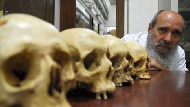 El canibalismo estaba relacionado con determinados rituales sagrados en la Europa y América prehistóricas (EFE).