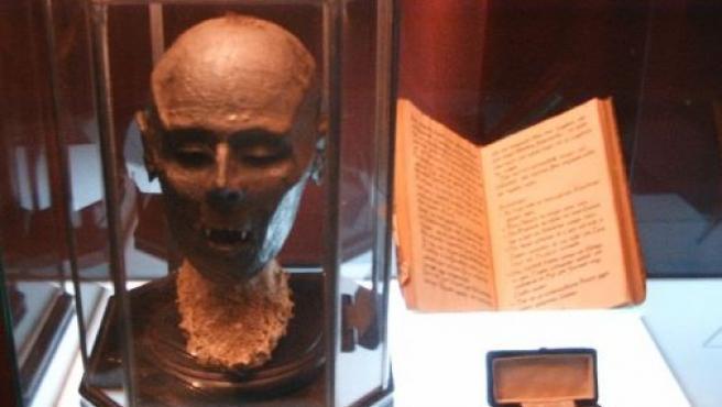 La cabeza del supuesto vampiro está muy bien conservada, incluso se pueden apreciar los famosos colmillos.