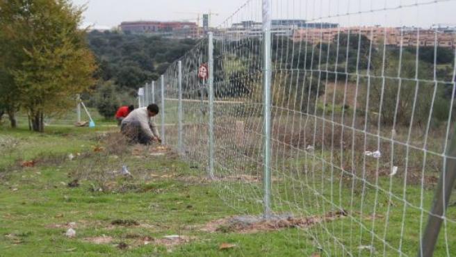 Operarios instalando una valla cinegética