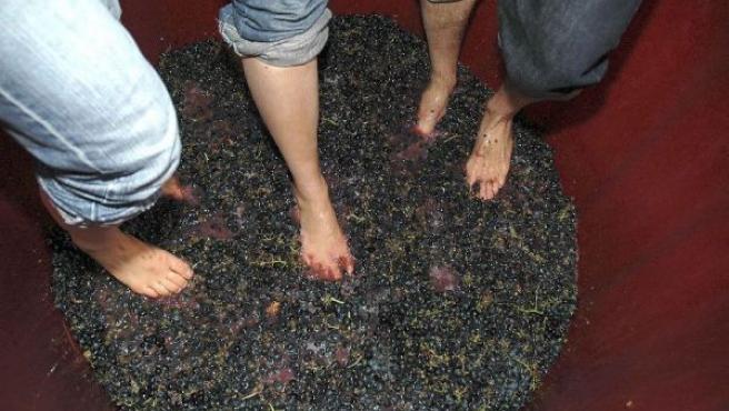 A la plaza del Consistorio llegarán las cestas llenas de uva de cada una de las bodegas para proceder al pisado, imagen de archivo.