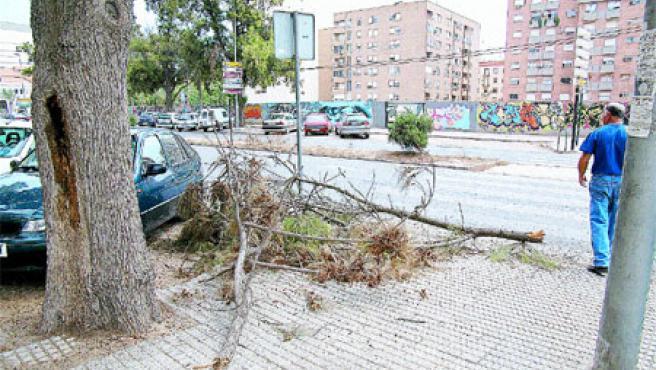 El desplome tuvo lugar en la calle Sebastián Feringan de Cartagena. (Carmen Saura)