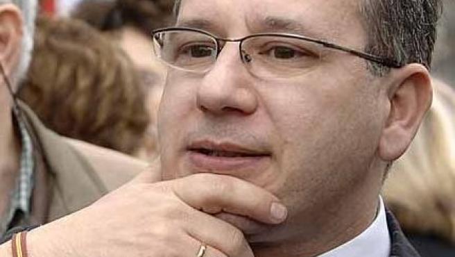 Francisco José Alcaraz, presidente de la AVT (EFE)