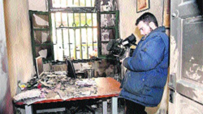 Llamas en el albergue municipal, situado en la calle Perafán de Ribera. (k. Rangel )