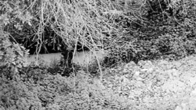 Según los ecologistas, estos ríos discurren con las aguas contaminadas.