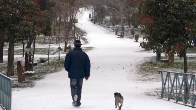 Un hombre pasea por el bosque de Valorio durante la nevada caída en la mañana de hoy. (Mariam A. Montesinos / EFE)