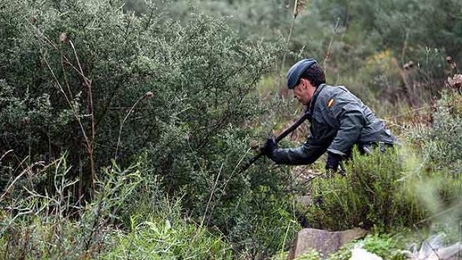 Un agente de la Guardia Civil, durante la búsqueda de pistas que conduzcan a la localización de Amy.
