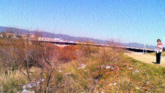 Estado de suciedad que sufre la orilla del Guadalquivir.