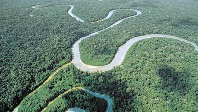 La Amazonía ha perdido ya el 18 % de su superficie total por la deforestación (ARCHIVO)