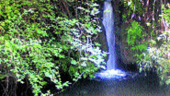 Los arroyos son uno de los parajes más bellos de la sierra. (M. Montero).