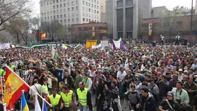 """Miles de cazadores y agricultores se manifestaron en Madrid en protesta por las """"limitaciones"""" de la Ley de Patrimonio Natural y Biodiversidad.(EFE)"""