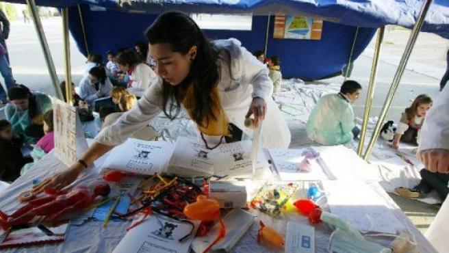 Estudiantes de Medicina de la Universidad de Valladolid organizan un hospital de ositos de peluche.