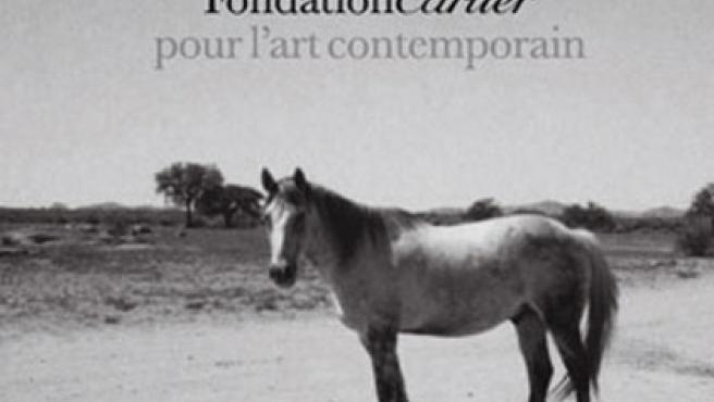 Catálogo de la exposición de Patti Smith en París