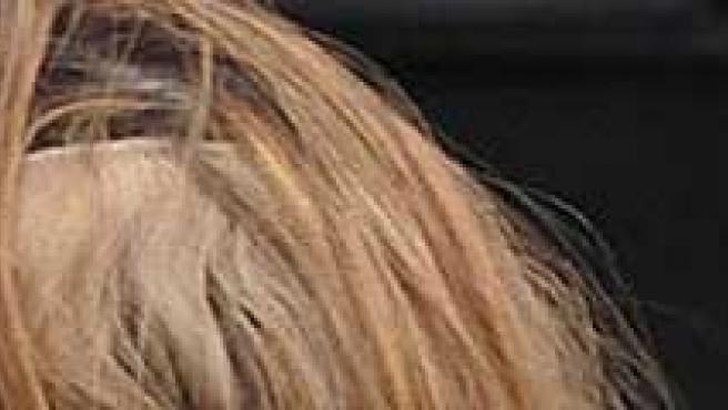 Fotografía de la cabellera de Liz Hurley (Daily Mail)